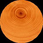 circle (8)